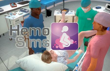 logo_hemosims-450x290